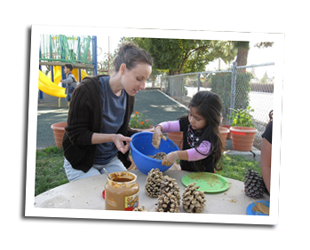teacher girl and pinecones